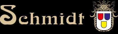 Malermeister Dominik Schmidt Logo